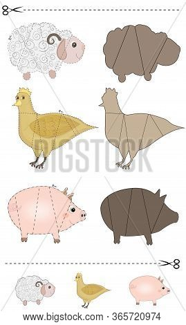 A Vector Illustration Of A Animals Puzzle. Find The Correct Shadow. Educational Game For Children. F