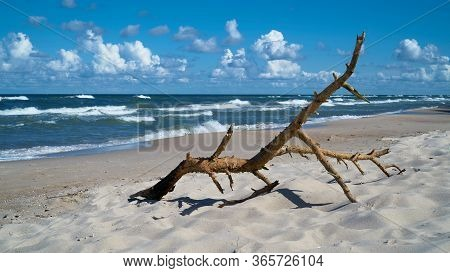 Flotsam On The Beach Of The Polish Baltic Sea Coast Near Rewal