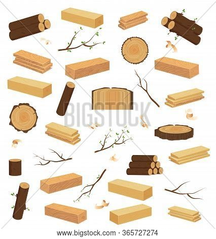 Stump And Tree On A White Background.tree Stump, Old Wooden Plank Or Timber Log For Campfire.