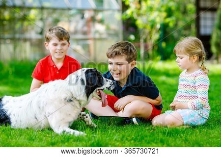 Two Kids Boys And Little Toddler Girl Playing With Family Dog In Garden. Three Children, Adorable Si