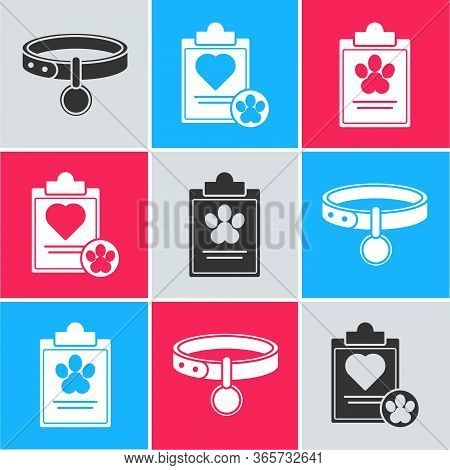 Set Collar With Name Tag, Clipboard With Medical Clinical Record Pet And Clipboard With Medical Clin