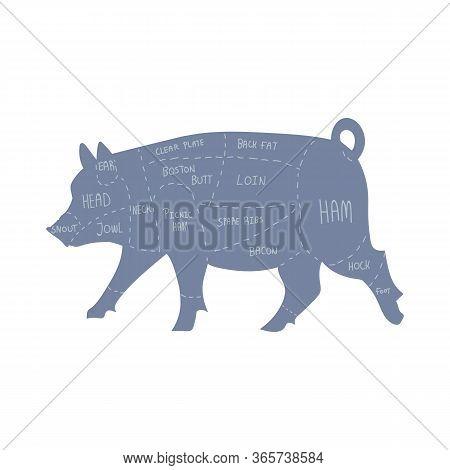 Cute French Farmhouse Pig Butcher Chart Vector Clipart. Hand Drawn Shabby Chic Style Country Farm Ki