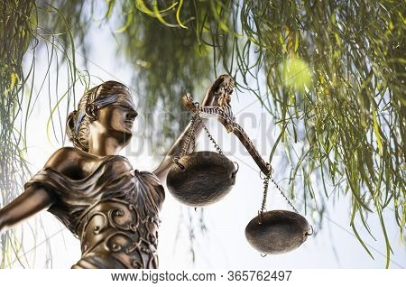 Bronze Themis Statue - Symbol Of Justice - With A Desert Acacia Tree In The Background