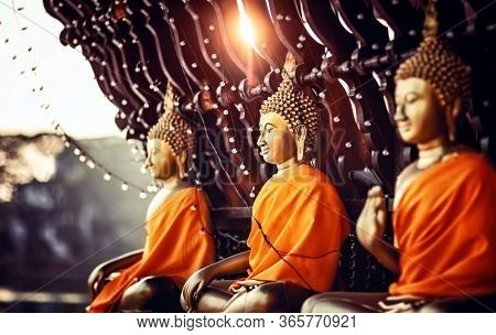 Three golden statues of Buddha in sunset light, temple in Colombo, Sir Lanka, Asian philosophy, meditation and soul balance concept