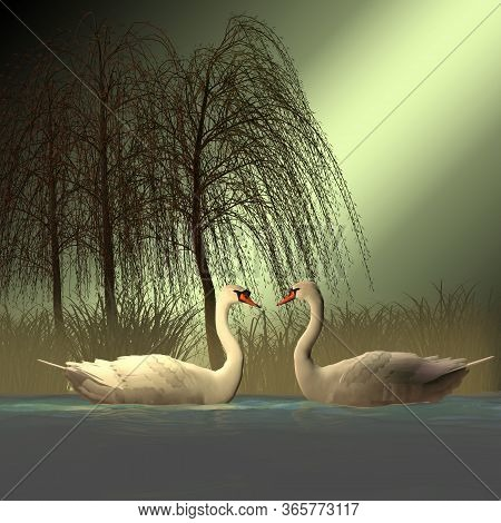 Two Mute Swans 3d Illustration - The Mute Swan Bird Has White Plumage With An Orange Beak Bordered B