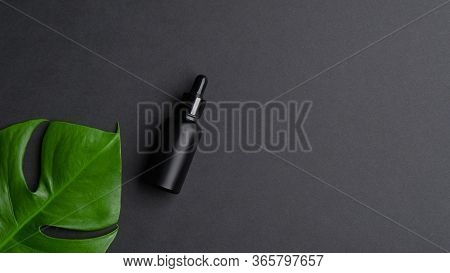 Black Aromatic Oil Bottle Mockup With Monstera Palm Leaf. Aromatherapy Massage Essential Oil, Serum