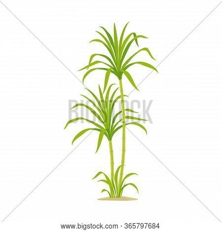 Vector Illustration Of Production And Farm Logo. Collection Of Production And Agriculture Stock Symb