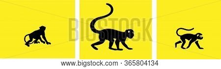 Silhouettes Of Tropical Monkey,vector Illustration , Outline, Primate, Sign