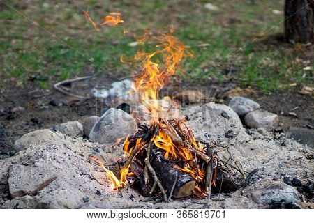 Kindle A Fire In The Forest While Resting