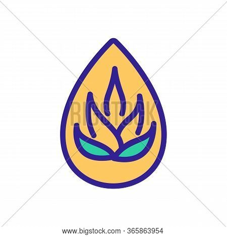 Drop Of Agave Oil Icon Vector. Drop Of Agave Oil Sign. Color Symbol Illustration