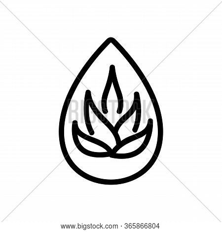 Drop Of Agave Oil Icon Vector. Drop Of Agave Oil Sign. Isolated Contour Symbol Illustration