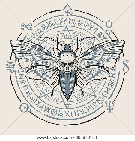 Vector Banner With A Butterfly Dead Head With A Skull-shaped Pattern On The Thorax. Hand-drawn Illus