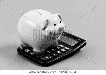 Exchange Rates. Economics And Business Administration. Piggy Bank Money Savings. Piggy Bank Pink Pig
