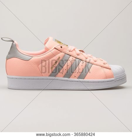 Vienna, Austria - August 13, 2018: Adidas Superstar Rose, Gold, Grey And White Sneaker On White Back