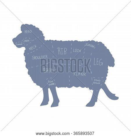 Cute French Farmhouse Sheep Butcher Chart Vector Clipart. Hand Drawn Shabby Chic Style Country Farm