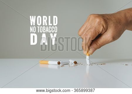 Quit Smoking, No Tobacco Day, Mother Hands Breaking The Cigarette