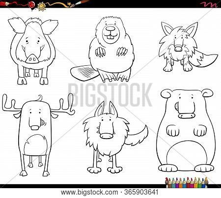 Black And White Cartoon Illustration Of Funny Wild Animals Comic Characters Collection Coloring Book