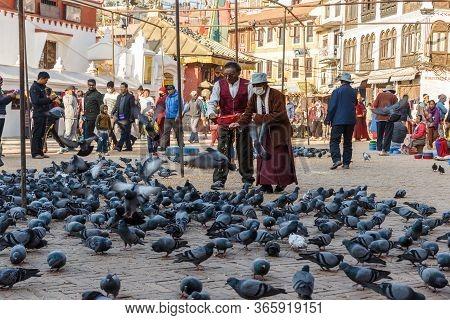 Katamandu, Nepal - November 12, 2016: An Elderly Nepalese Man And Woman Feed Pigeons On The Square N
