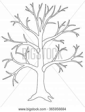 A Large Tree Without Leaves Is A Vector Linear Picture For Coloring. A Tree In Winter Or Autumn With