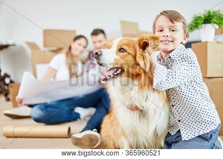 Boy and dog as best friend when moving to a new home