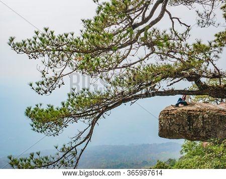 Beautiful Scenery View Of Lomsak Cliff On Phu Kradueng Mountain National Park In Loei City Thailand.