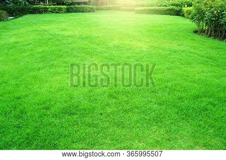 Garden With Fresh Green Grass Both Shrub And Flower Front Lawn Background, Garden Landscape Design F