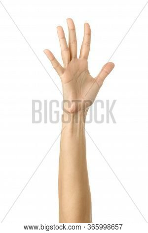 Raised Hand Voting Or Reaching. Woman Hand With French Manicure Gesturing Isolated On White Backgrou