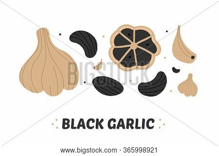 Set, Collection Of Vector Black Garlic Icons, Fermented Garlic Whole And Separated Cloves.