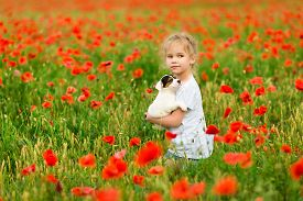 Beautiful Little Girl With Puppy Jack Russel Terrier In A Field Of Poppies Sunny Weather.