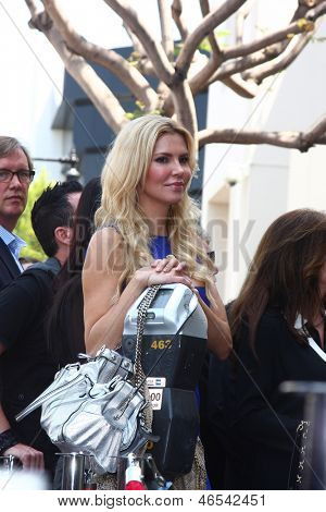 LOS ANGELES - MAY 31:  Brandi Glanville at the David Foster Hollywood Walk of Fame Star Ceremony at the Capital Records Building on May 31, 2013 in Los Angeles, CA