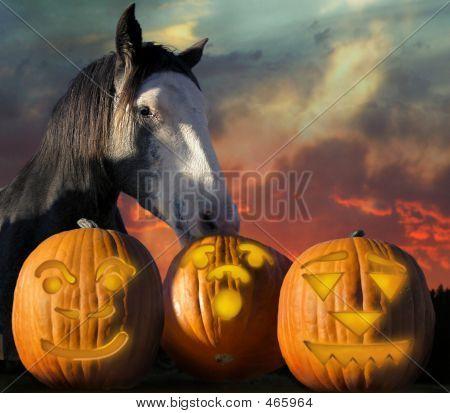 Horsehaloween