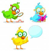 three smart  birds in different positions of learning and exploring poster
