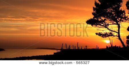 Beautiful Sunset At Jetty