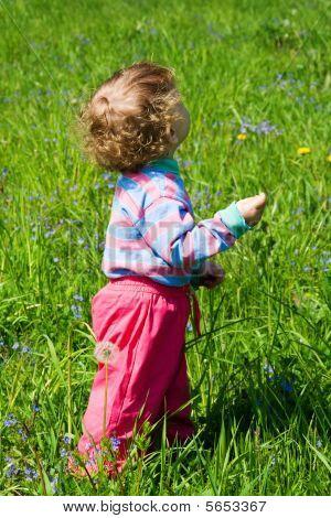 Watching child in grass