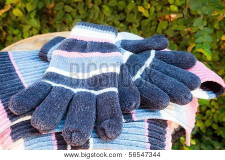 Close Up Wool Gloves And Scarf