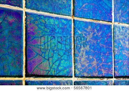 Abstract Mosaic Piece Of  Ceramics