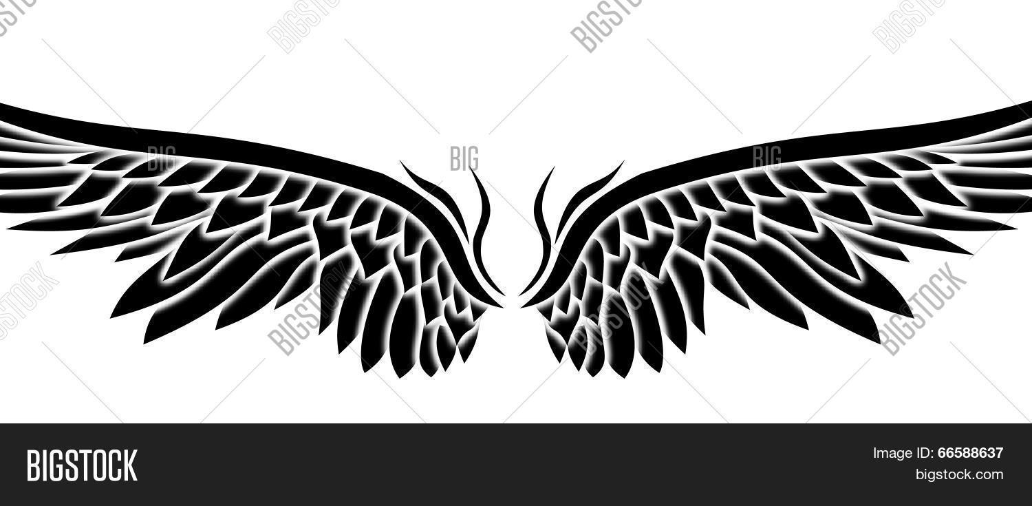 ornaments eagle wing vector photo free trial bigstock ornaments eagle wing vector photo