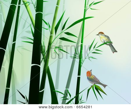 birds sitting on the branches in a bamboo forest poster