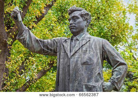 Noguchi Hideyo Statue in Tokyo