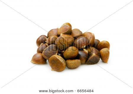 Many Chestnuts Isolated On The White Background