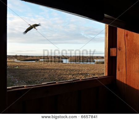 a wooden observation point with a stork poster