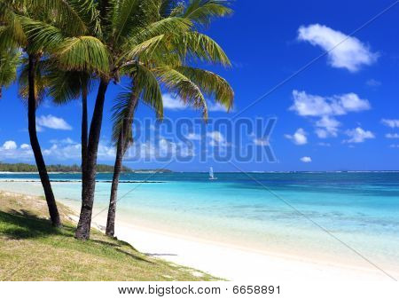 Paradise Beach In Tropical Island