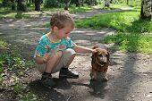 boy with badgerdog 2 poster