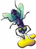 Top view of a disgusting and mocking fly with violet body, green wings and bulging eyes while posing, smiling, staring at you and drinking from a weird yellow liquid on the ground poster