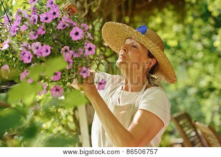 Happy senior woman tends the flowers in a hanging pot. There is a green background of blurred plants and wooden outdoor chairs are visible in the lower right corner. poster
