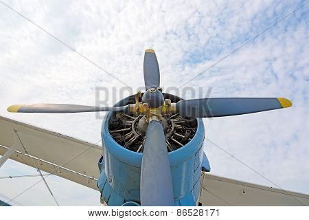 The Engine And Propeller Plane An2.