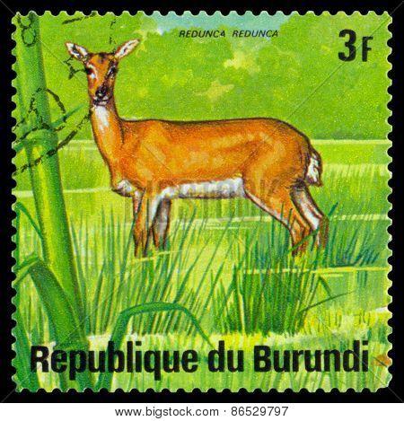 Vintage  Postage Stamp. Water Buck. Animals Burundi.