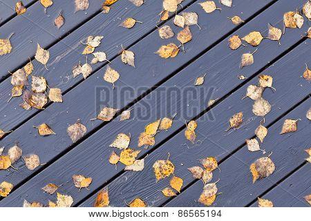 Wooden wet outdoor floor.