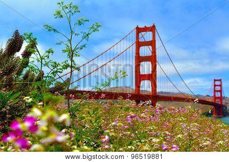 Golden Gate Bridge In San Francisco - Ca