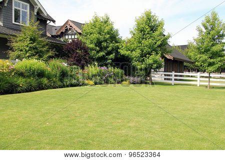 Perennial flower summer garden, in a front yard.